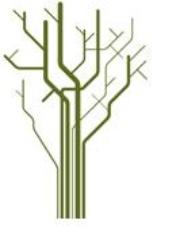 treetforskning.JPG (Bredde: 180px)