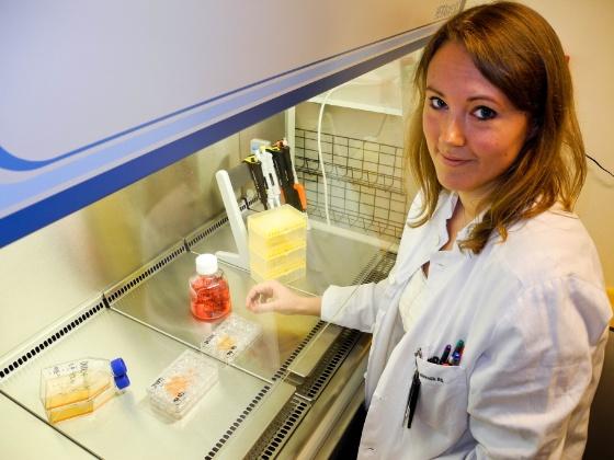 Dyrking av T celler i laboratoriet