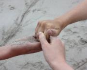 barnerettsgruppa bilde tre hender.jpg (Bredde: 180px)