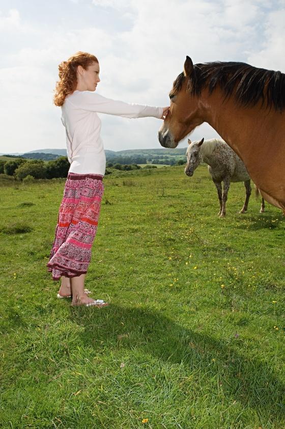 hesteterapi.jpg (Bredde: 560px)