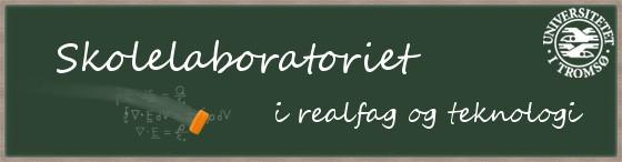 Skolelaboratoriet i realfag og teknologi