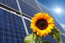 solenergi.jpg