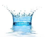 vann.jpg