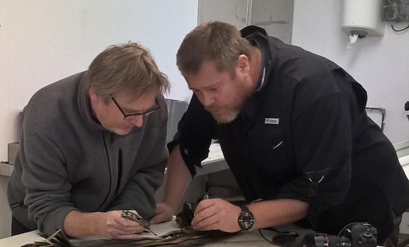 Geir Johnsen (t.v.) og Jørgen Berge har samarbeidet på flere tokt på Svalbard. Foto: Øyvind Ødegård