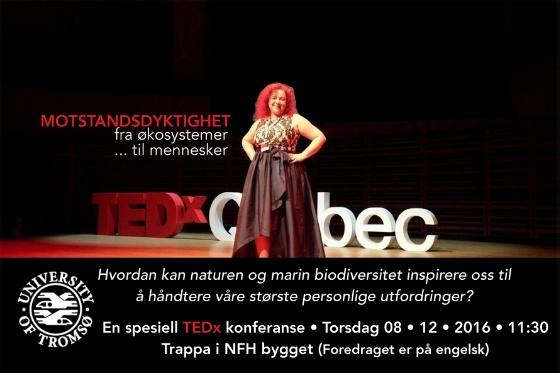 TEDx_UIT-2.jpg