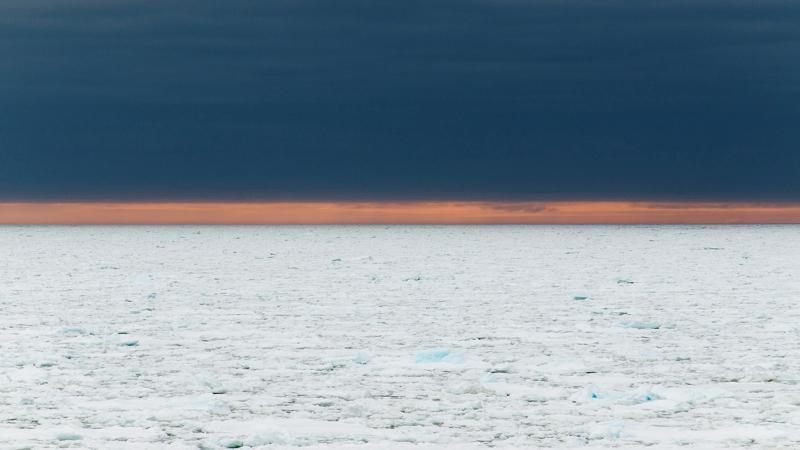 Hvordan påvirkes livet i havet når stadig mer av havisen smelter? Vil de spesielle økosystemene i Polhavet forsvinne?
