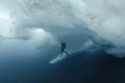 Dykker-i-Polhavet-Foto-Peter-Leopold-Norsk-Polarinstitutt..jpeg