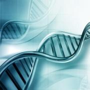 DNA400.jpg