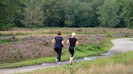 jogging.jpeg