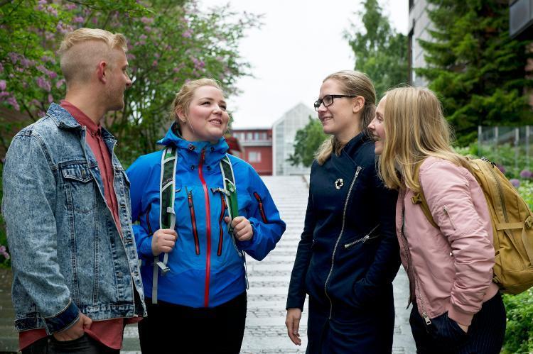 Medie- og dokumentasjonsvitenskap, bachelor, uit.no