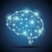 Brain intelligence400.jpg
