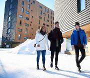 Nordic Urban Planning.jpg
