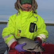 ingress Katja whitefish.jpg