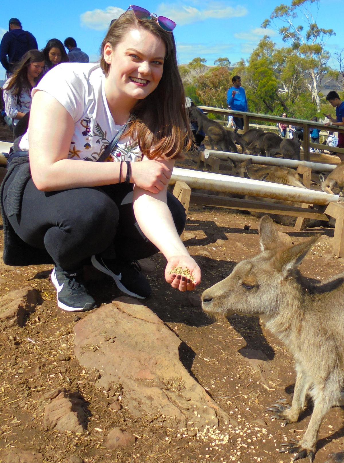 Dame mater en kenguru