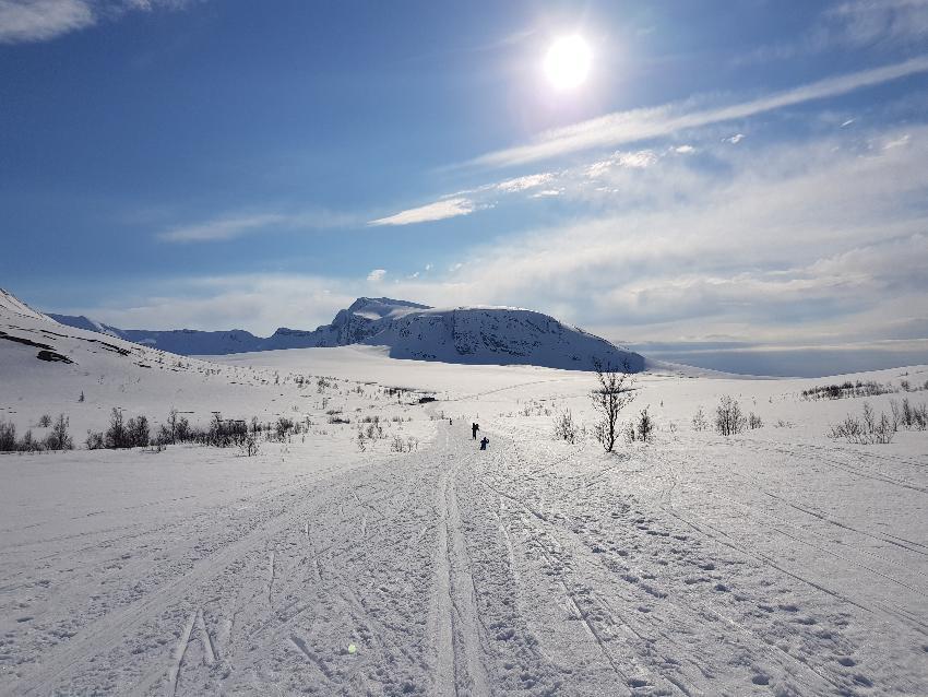 Skiløype innover snødekte fjell i solskinn