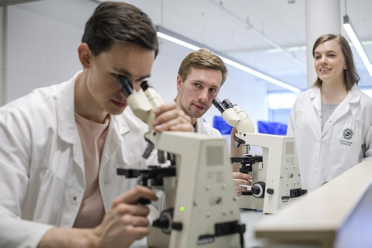 Unge mennesker, forskning, mikroskop