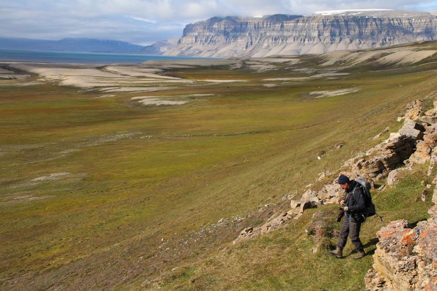 Landskapsbilde fra Svalbard på sommeren med person i forgrunnen.