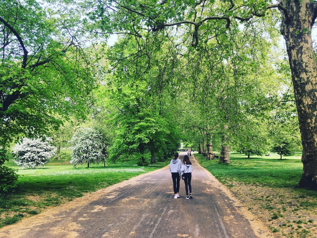 to ungdommer som går bortover en sti mellom store trær