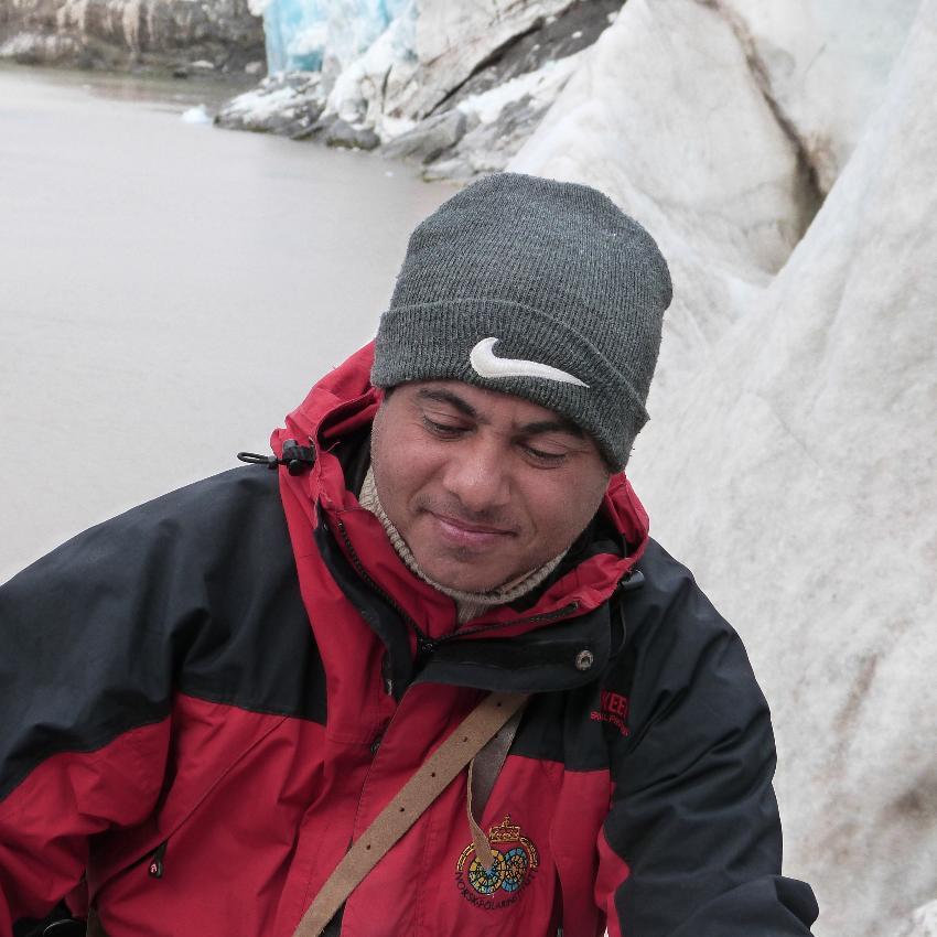 Tamer på tokt i isen
