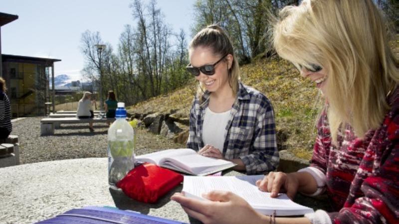 Studenter sitter ute i sola og leser fag. Foto: Ingun A. Mæhlum.