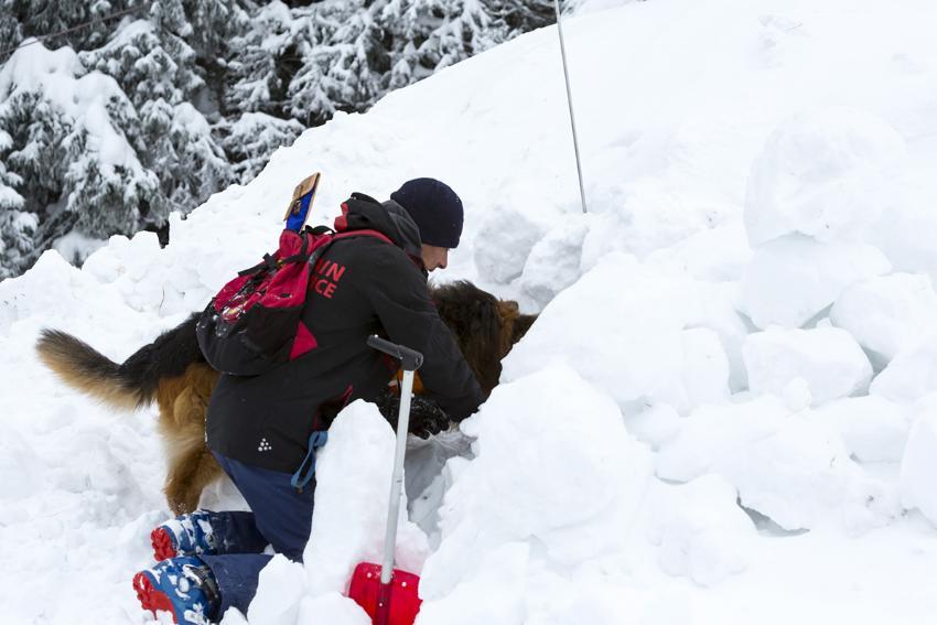 Mann og hund graver i snøskred