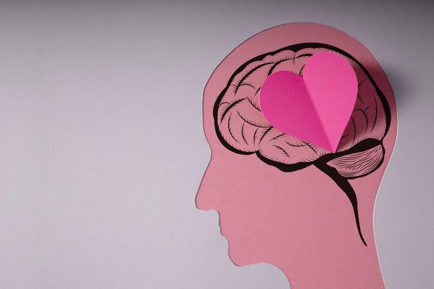 Hjerne og hjerte-illustrasjon