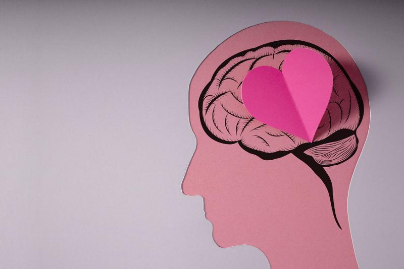 Illustrasjon av menneskehode, hjerne og et hjerte. Foto: Mostphotos